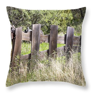 Throw Pillow featuring the photograph Who Ate The Fence by Phyllis Denton