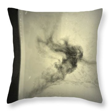 Throw Pillow featuring the photograph Who Follows You by Mark Ross