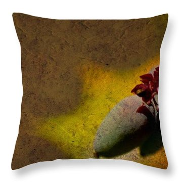 Who Knows Throw Pillow by Trish Tritz
