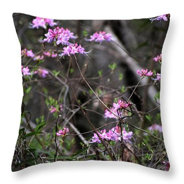 Throw Pillow featuring the photograph Who Put The Wild In Wildflowers by Skip Willits