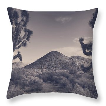 Who We Used To Be Throw Pillow by Laurie Search