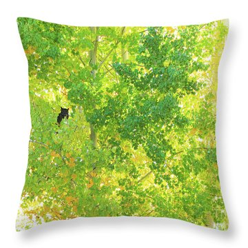 Who Who  Throw Pillow by Michele Penner