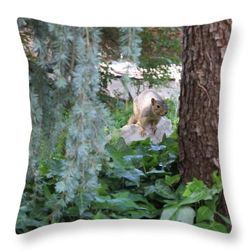 Throw Pillow featuring the photograph Whoa Nellie by Marie Neder