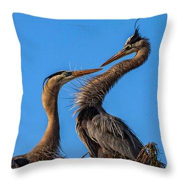 Whoaaaa Throw Pillow by Cyndy Doty