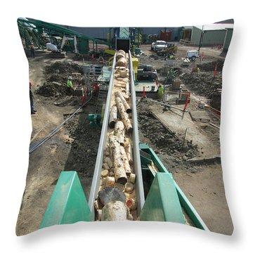 Whole Log Throw Pillow