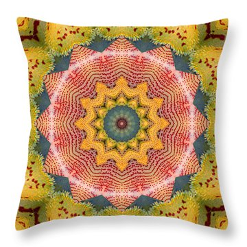 Throw Pillow featuring the photograph Wholeness by Bell And Todd