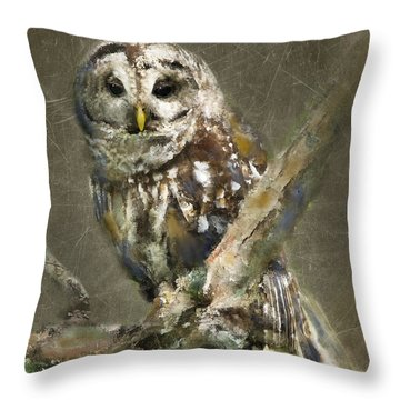 Whoooo Throw Pillow