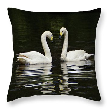 Throw Pillow featuring the photograph Whooper Swans by Sandy Keeton