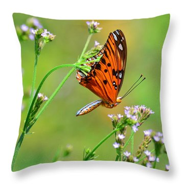 Whoops Throw Pillow by Kathy Gibbons
