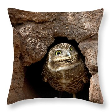 Who's There Throw Pillow by Phyllis Denton