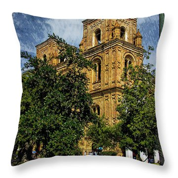 Why Do I Live Here? II Throw Pillow by Al Bourassa