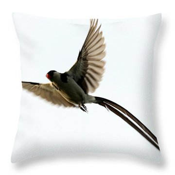 Whydah Abstract I Throw Pillow