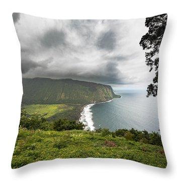Wiapio Valley Throw Pillow by Allen Biedrzycki