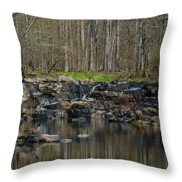 Throw Pillow featuring the photograph  Wickecheoke Creek - New Jersey by Bill Cannon