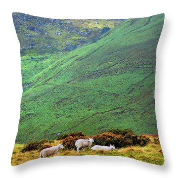 Throw Pillow featuring the photograph Wicklow Pastoral by Jenny Rainbow