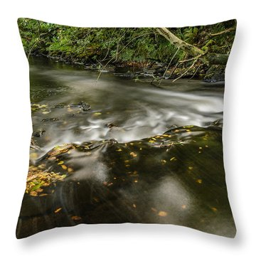 Wicklow Stream Throw Pillow
