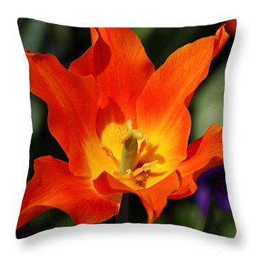 Wide Open Throw Pillow by Katherine White