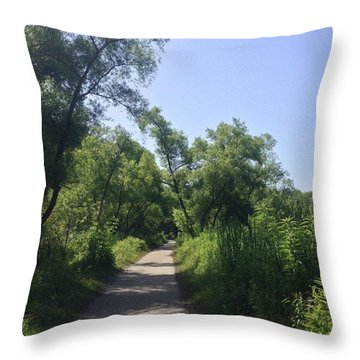 Wide Path Throw Pillow