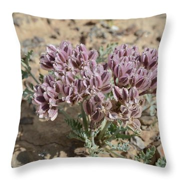 Throw Pillow featuring the photograph Widewing Spring Parsley by Jenessa Rahn