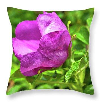 Wild Alaskan Rose Throw Pillow