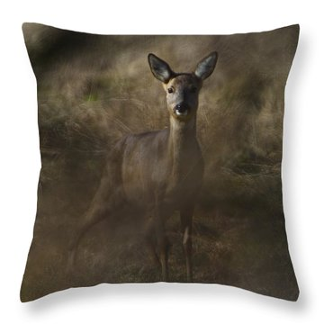 Throw Pillow featuring the photograph Wild And Free by Gary Bridger