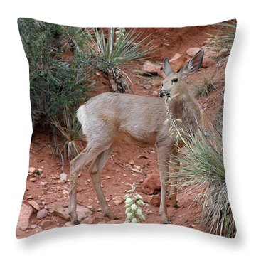 Wild And Pretty - Garden Of The Gods Colorado Springs Throw Pillow