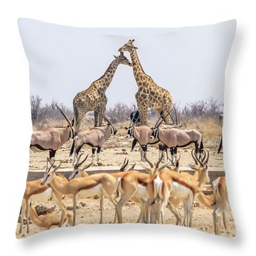 Wild Animals Pyramid Throw Pillow