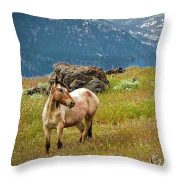 Wild Appaloosa Horse Throw Pillow