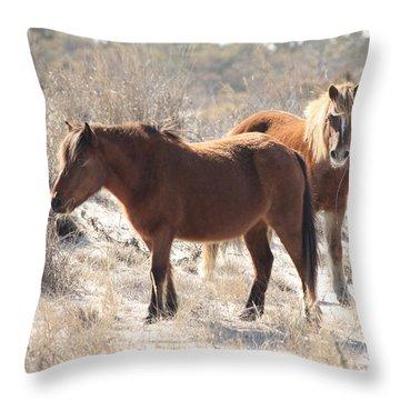 Wild Assateague Ponies 1 Throw Pillow