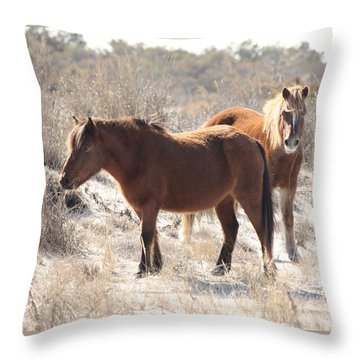 Wild Assateague Ponies 1 Throw Pillow
