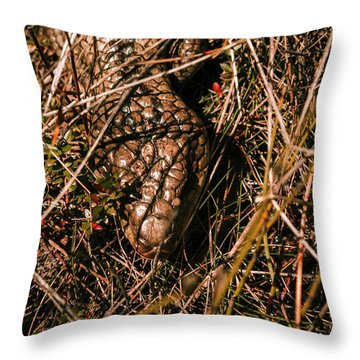 Australian Wildlife Throw Pillows