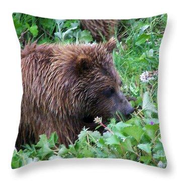 Wild Bear Eating Berries  Throw Pillow by Kathy  White
