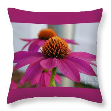 Wild Berry Coneflower Throw Pillow