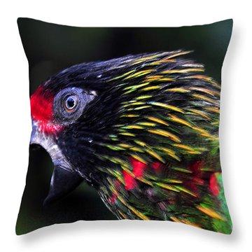 Wild Bird Throw Pillow by David Lee Thompson