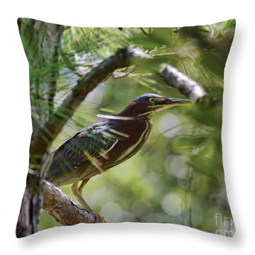 Throw Pillow featuring the photograph Wild Birds - Green Heron Tries To Hide by Kerri Farley