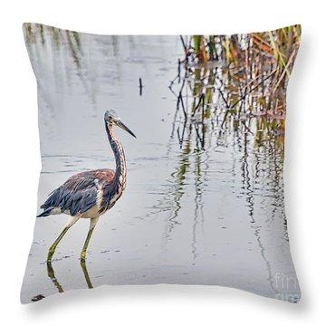 Wild Birds - Tricolored Heron Throw Pillow