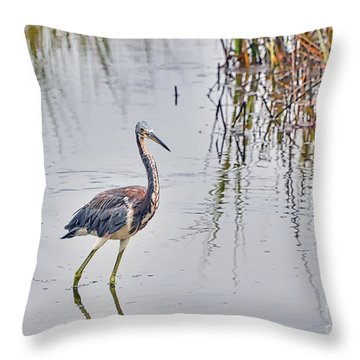 Wild Birds - Tricolored Heron Throw Pillow