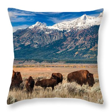 Wild Bison On The Open Range Throw Pillow