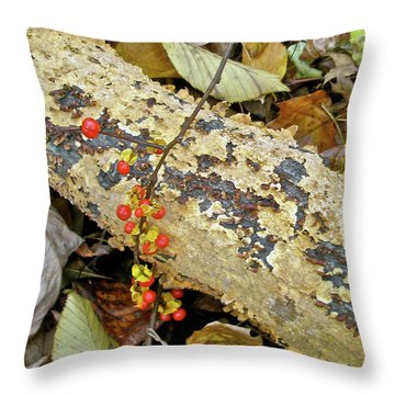 Wild Bittersweet Vine Throw Pillow by Mother Nature