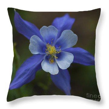 Wild Blue Throw Pillow