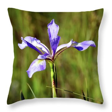 Throw Pillow featuring the photograph Wild Blue Flag Iris by Sally Sperry
