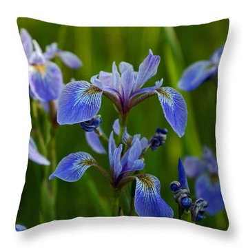 Wild Blue Iris Throw Pillow
