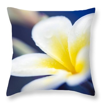 Wild Blue Morning Throw Pillow