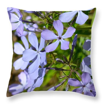 Wild Blue Phlox Throw Pillow