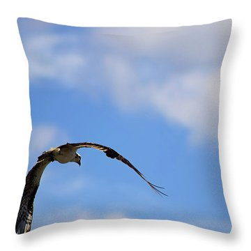 Wild Blue Yonder Throw Pillow