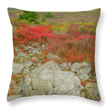 Throw Pillow featuring the photograph Wild Blueberries by David Waldrop