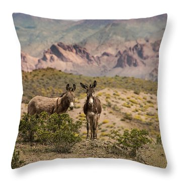 Wild Burros At Lake Mead Throw Pillow by Janis Knight