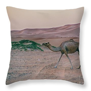 Throw Pillow featuring the photograph Wild Camel by Charles McKelroy