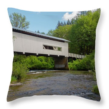 Wild Cat Bridge No. 2 Throw Pillow