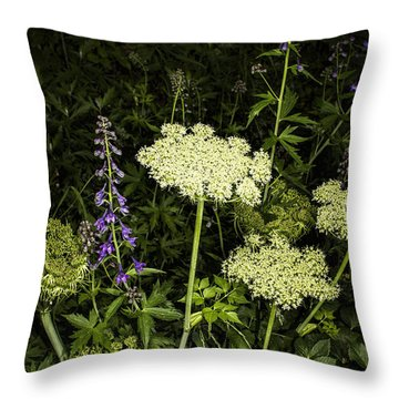 Wild Celery And Larkspur Throw Pillow